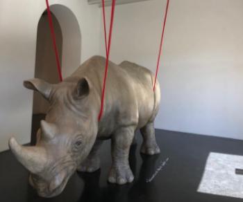 Mostre - Ionesco, il Rinoceronte e Roma