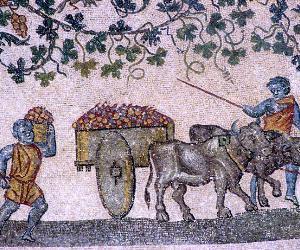 Visite guidate: Il complesso di Sant'Agnese fuori le mura