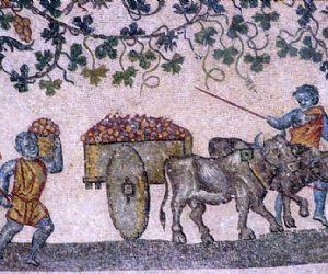Visite guidate - Il complesso di Sant'Agnese fuori le mura e il mausoleo di Santa Costanza