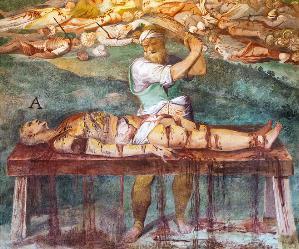 Visite guidate - Santo Stefano Rotondo