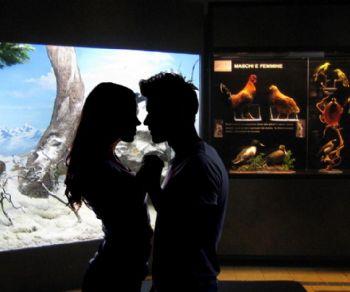San Valentino al Museo di Zoologia