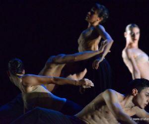 Un progetto in rete avviato nel 2013 per la promozione della danza contemporanea su scala europea