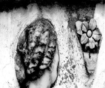 Mostre - Carthage ou la memoire des pierres