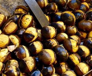 Sagre e degustazioni: Montemonaco nel cuore