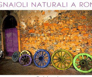 Altri eventi - Vignaioli Naturali a Roma