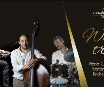 Locali - WE 3 Trio