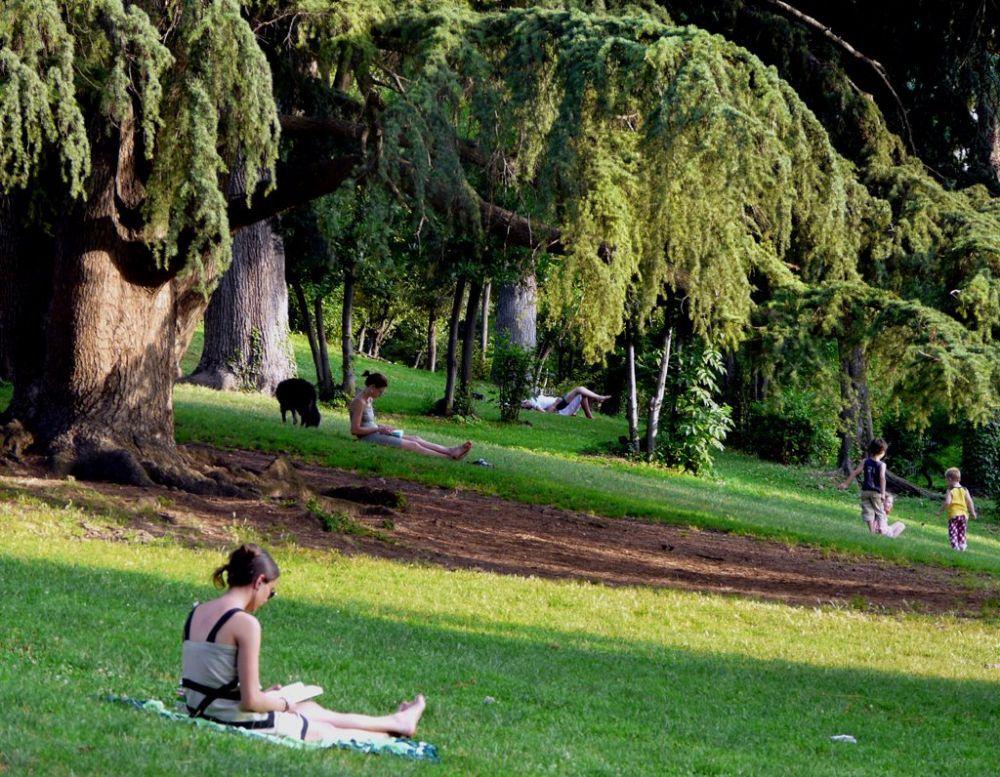Bildresultat för parco celimontana